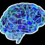 trauma brain