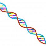 gene food preference