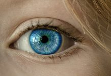 New finding may help treat diabetic eye disease