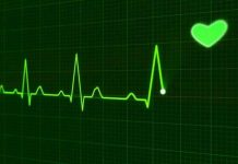 Scientists discover new genes for heart function