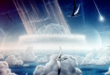 Dinosaurs were unaffected by climate change before their extinction
