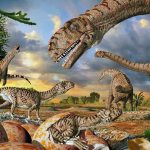 World's oldest dinosaur eggs reveal new information about dinosaur evolution