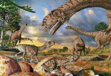 World's oldest dinosaur eggs reveal new information about dinosaur evolution