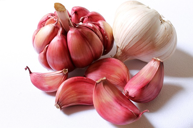 Garlic may help cut memory problems caused by aging