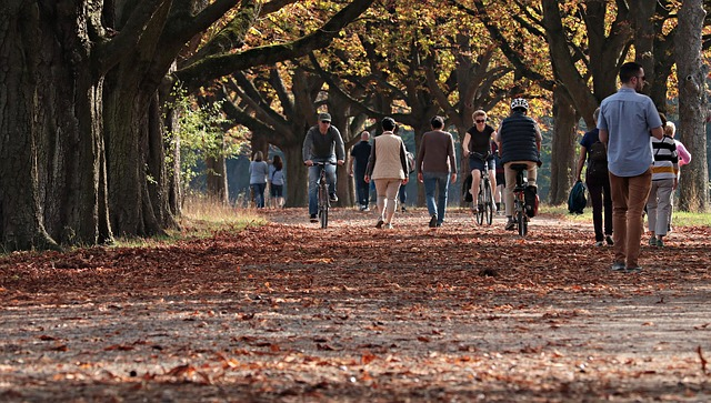 One hour of walking every week may cut disability