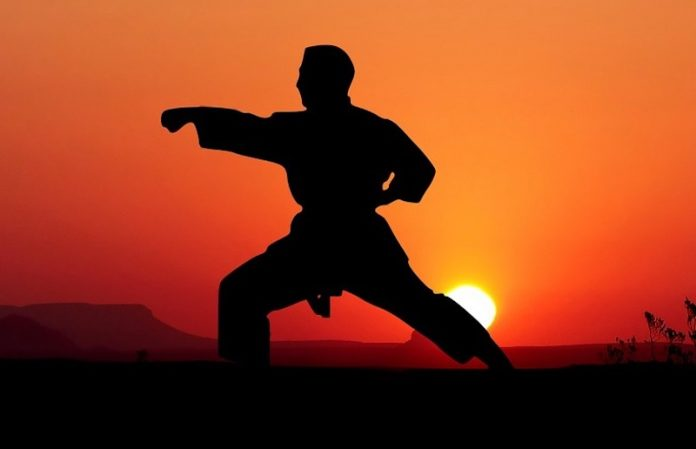 Image result for Martial Arts and Health Benefits