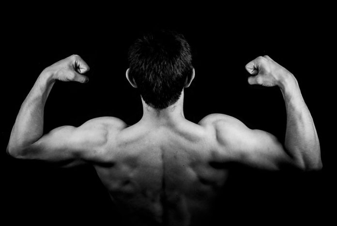 Protein powders for muscle growth may bring health risks