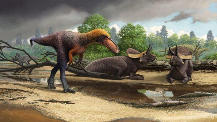Scientists find a short relative of Tyrannosaurus rex