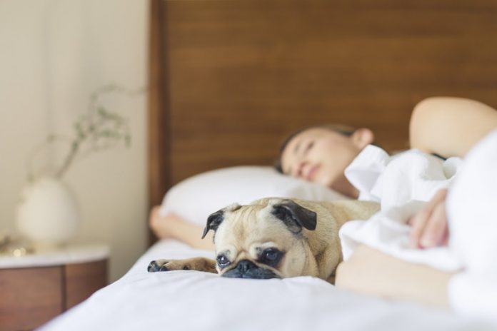 Short sleep at night may signal heart disease