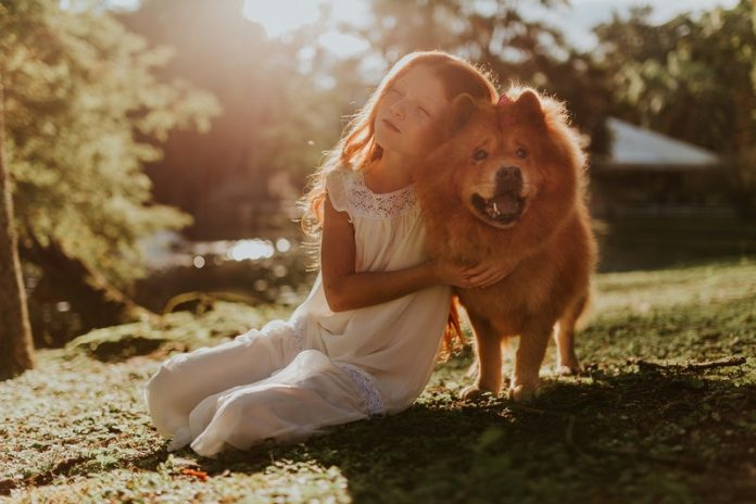 These types of dogs may bite children most