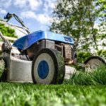 This common weed killer linked to human liver disease