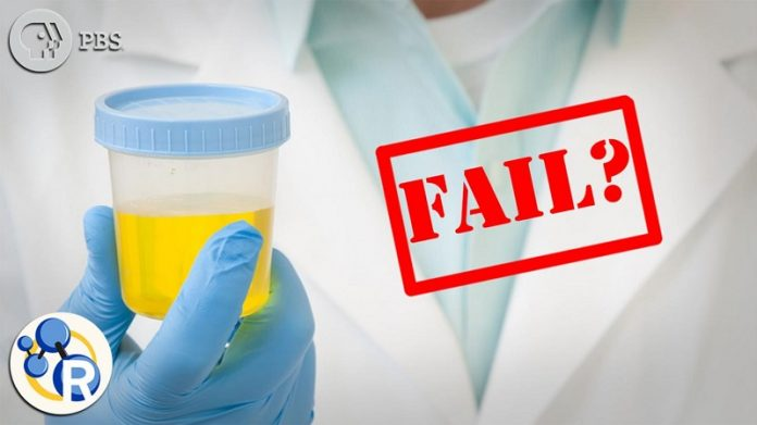 Could CBD or Cannabidiol make you fail a drug test