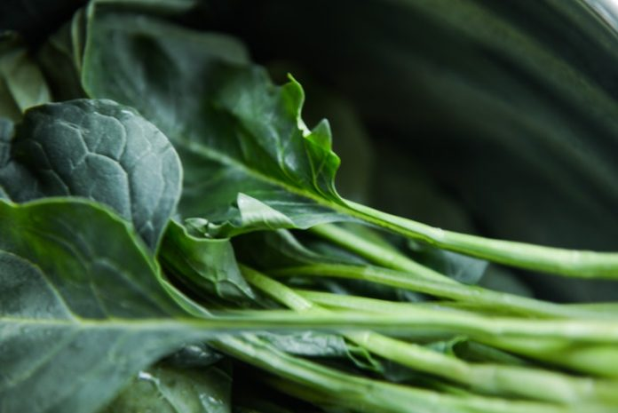 Food high in vitamin K may benefit people with blood clots