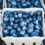 One cup of blue berries a day keeps heart disease at bay