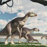 Scientists find a herd of dinosaurs underground at Lightning Ridge