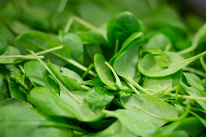 Why women should focus on leafy greens even more after menopause