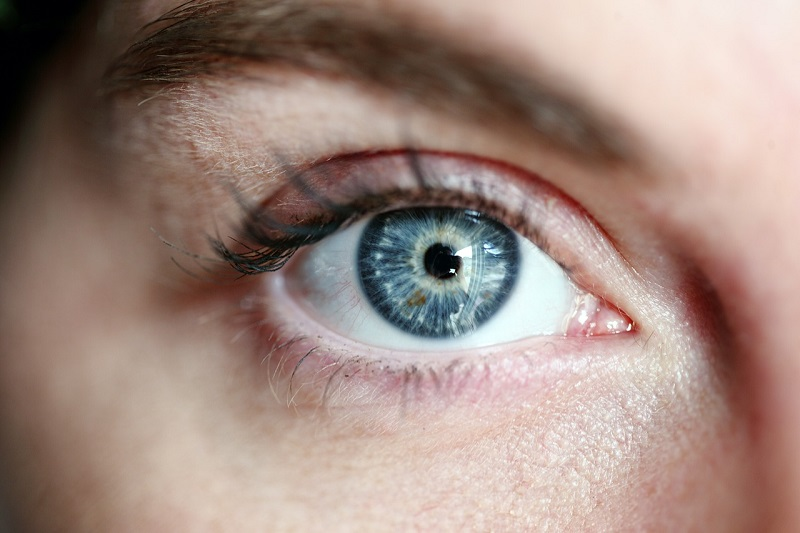 How the eyes could be windows to the risk of Alzheimer's disease